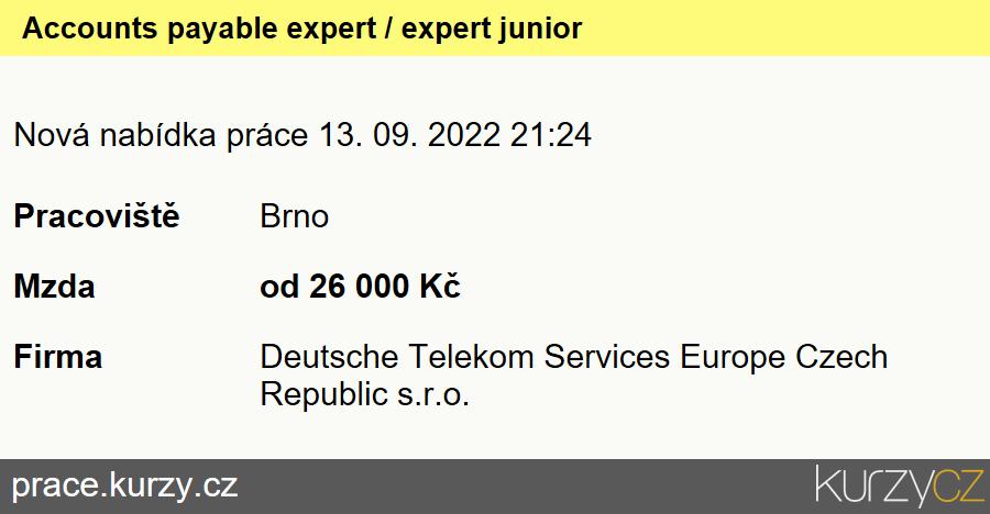 Accounts payable expert / expert junior, Hlavní účetní